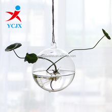 Hand Blown Clear Hanging Glass Ball