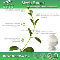 Herbal Extract-Natural Sweetener Stevia Leaf P.E. Total Steviol Glycosides 90% In Bulk CAS 57817-89-7