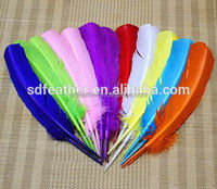 Long Dyed Turkey Feather Colorful Turkey Feathers for Decoration