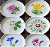 Flower decals printing ceramic plate set,side dinner plater,painted plate for gift