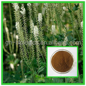 Natural Black Cohosh Extract Powder 2.5% Triterpenoides Saponis
