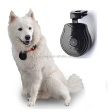 new launch product mini digital trail animal camera for your lovely pets