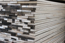 American Paulownia Lumber for Furniture