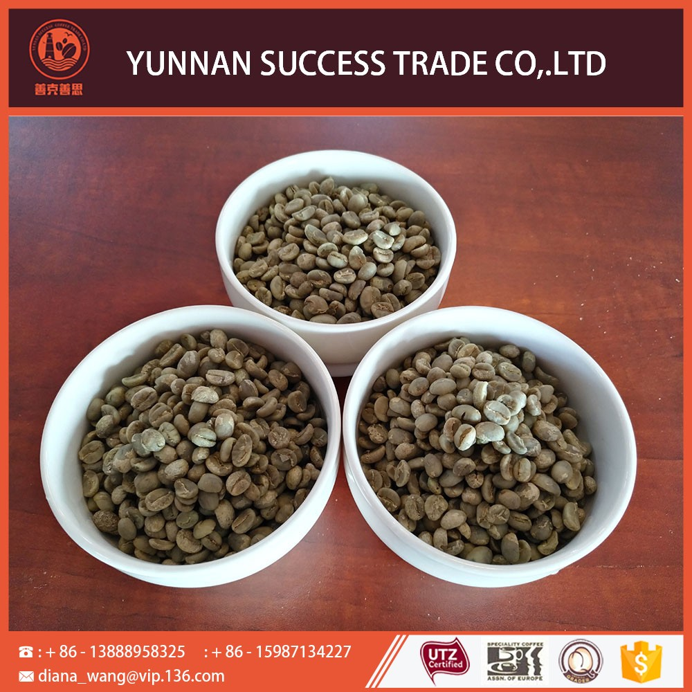Welcome wholesales hot sale promotion green coffee beans