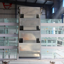 Multi-tier Layer Chicken Layer Cages With Low Cost