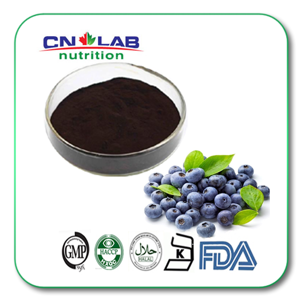 hot product Bilberry Extract Powder, Vaccinium myrtillus, Anthocyanidins, Blue Berry Extract
