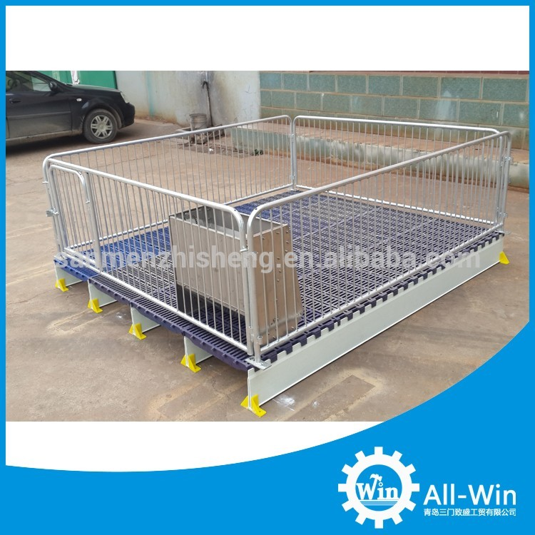 factory supply pig farming equipment for sow
