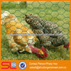 /product-detail/best-sell-hexagonal-wire-mesh-pvc-hexagonal-mesh-chicken-1037095018.html