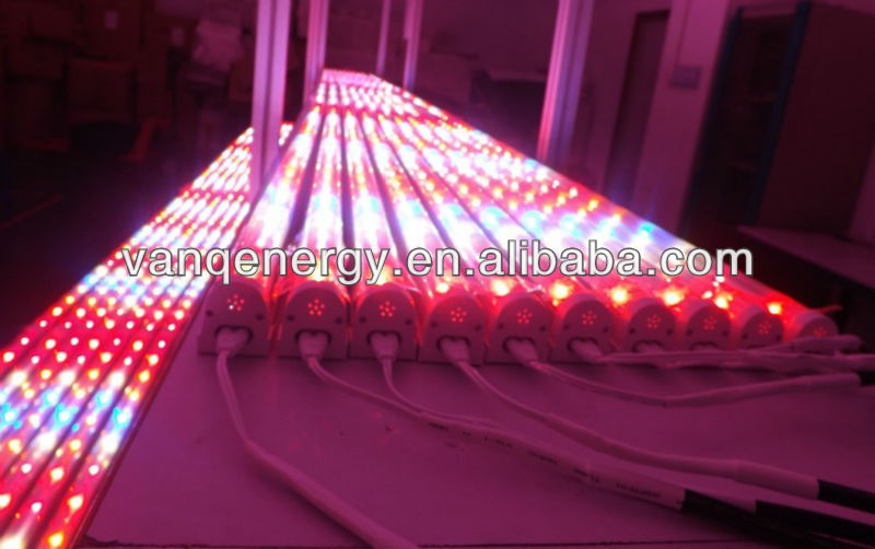 hydroponic systems, red blue led grow tube light for lettuces