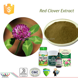 Natural isoflavones 40% extract HACCP Kosher FDA cGMP certified factory isoflavone red clover extract organic red clover extract