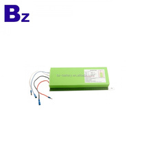 Customized BZ 33105300 24V 9AH for E-bike Rechargeable Lithium Ion Battery