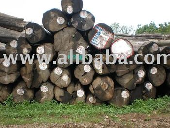Teak Direct Supplier