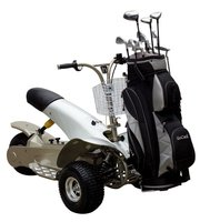 CE Approved power electric motor Golf buggy electric vehicle