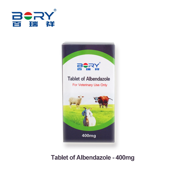 Tablet of Albendazole 400mg