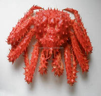 hot sale high quality live king crab