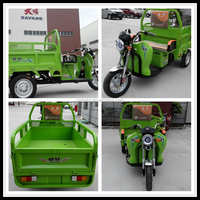 Battery Powered 48V Electric Three Wheel Motorcycle For Adults