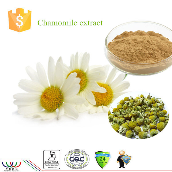 Natural pure high quality anti-oxidation Chamomile extract with 30% ~ 98% apigenin
