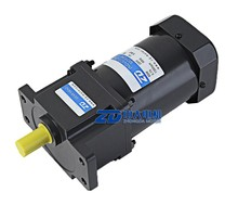 60W 110V/220V 50/60Hz micro electric induction AC gear motor, China manufacture
