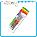 Art suppliers decoration craft silicon bulk paint brush