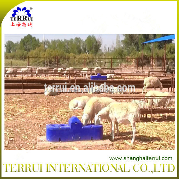 sheep equipment -High quality plastic Sheep drinking waterers