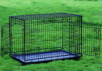 "36"" Folding Dog Crate Cage Kennel Two Door With Divider Pit Bull Beagle Bulldog"
