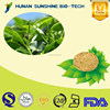 Bulk Pure Green Green Tea Extract P.E. tea polyphenols EGCG/ Green Tea Extract Powder
