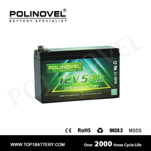 Customize battery pack Polinovel smart UPS battery replacement 12v 5ah lithium battery pack