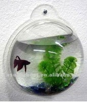 Suspension clear acrylic aquarium/mini fish tank