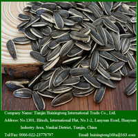 Chinese 5009 Sunflower Seeds For Snack or Edible