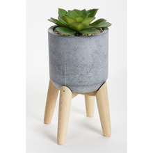 Artificial Small Tabletop Potted Succulent Plant With Wooden Stand