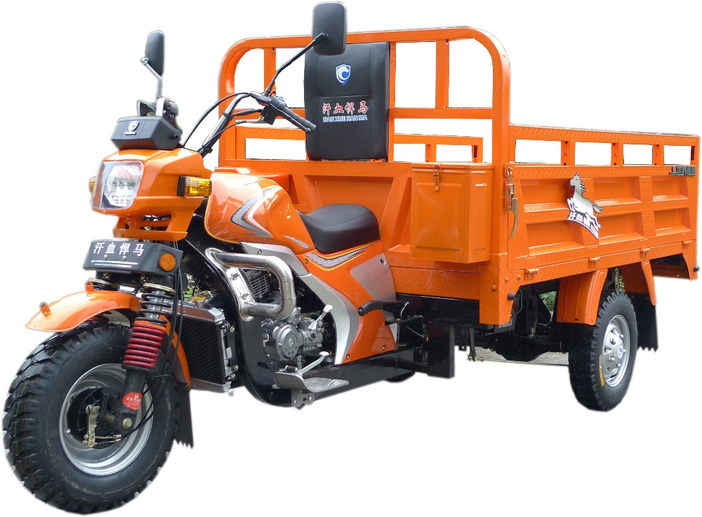 chongqing petrol tricycle for adult
