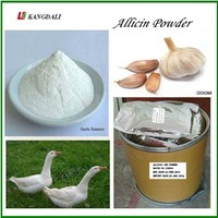 High Quality Low Price Strong Odour Allicin Powder 25% For Chicken And Fish Feed