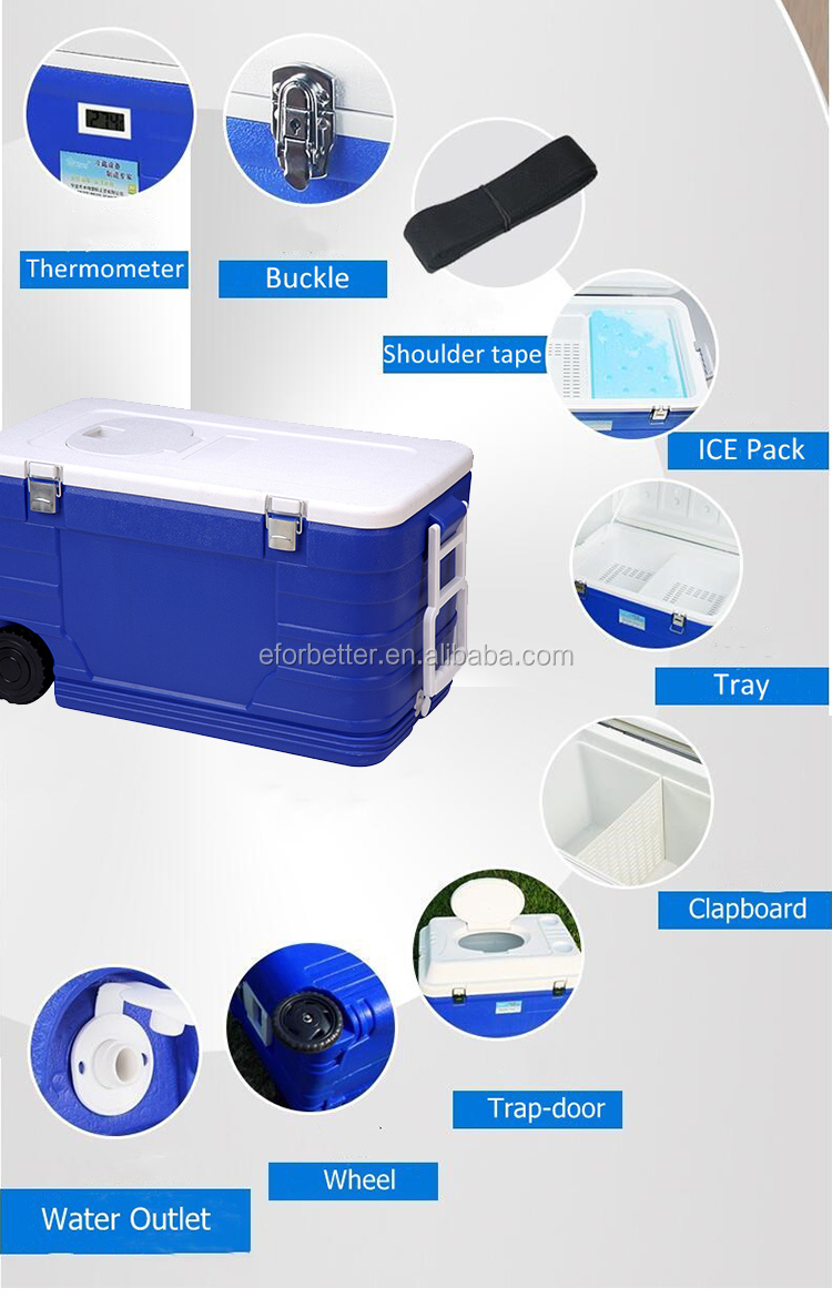 Quality Thermo Fishing Coolers styrofoam cooler bottle box insulated ice box