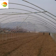 producer~iron greenhouse and hot galvanized steel truss greenhouse