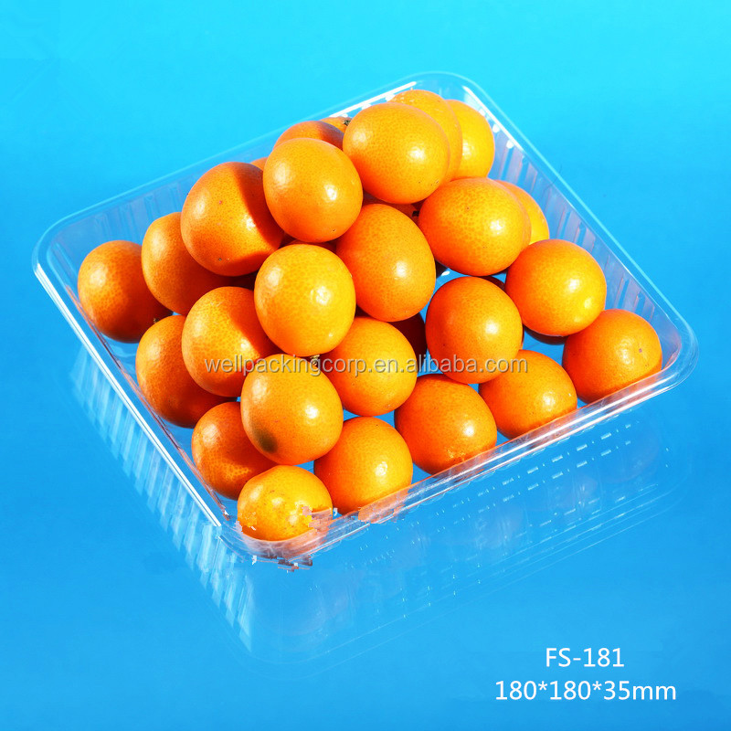Hot Selling Disposable Plastic Clamshell Fruit and Vegetable Packing Tray