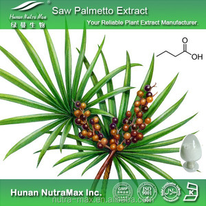 Competitive Price Natural Saw Palmetto Berry Extract 85% Fatty Acid Oil