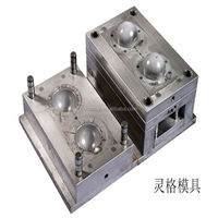 ningbo boomray own professional produce different kinds of plastic products plastic injection mold for worm