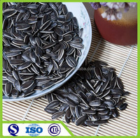 Big size human consumption Chinese sunflower seed