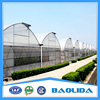 Multi Span Plastic Film Covered Greenhouse