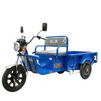 Chinese electric bike cabin cargo three wheel electric tricycle