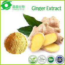 Factory supply 100% Pure Fresh Ginger Extract Powder Water Soluble