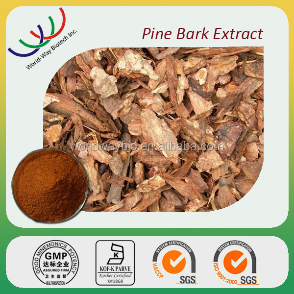 Pine Bark Extract 50%-95% proanthocyanidins,30%-95% polyphenols