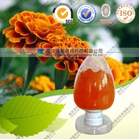 Food Supplement Antioxidant 100% Natural Marigold Extract Lutein