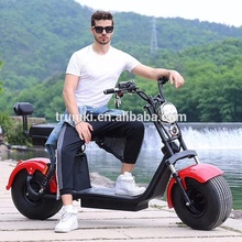 2019 New style Customized citycoco 2 wheels smart self balancing electric scooter