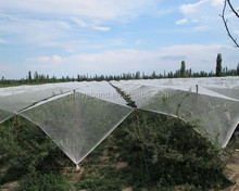 agriculture greenhouse anti insect net, plastic netting for hail proof, greenhouse anti insect net