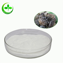 Free sample salmon fish powder collagen/collagen hydrolysate powder