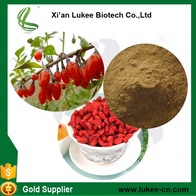 Fresh Goji Berry Extract Wolfberry Extract 50% Polysaccharide In Bulk
