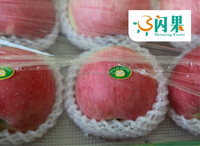 2015 Fresh red apples /fuji apple price list/Shaanxi Red fuji apple