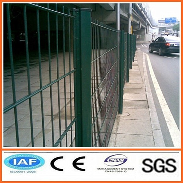 Cheap Twin wire mesh fence