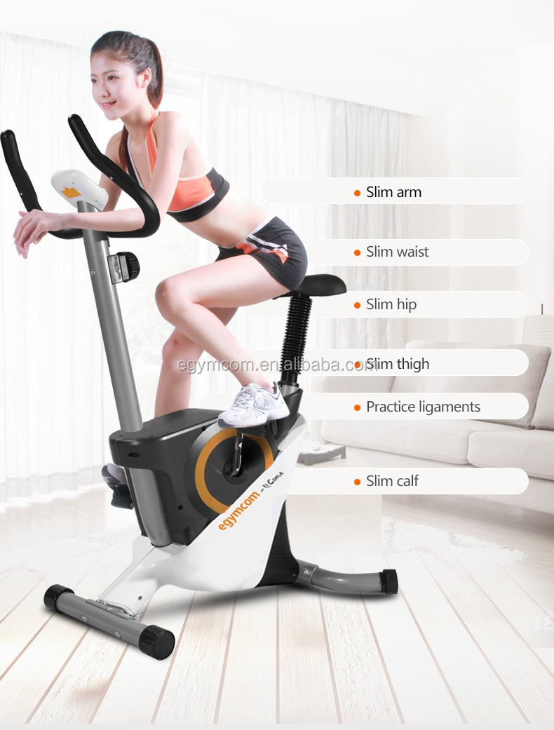 Mini Spinning Household Silent Magnetic Exercise Bike Indoor Lose Weight Sports Equipment Factory